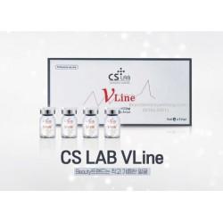 CS - 实验室 V 线